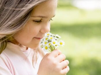 scientific facts behind smell